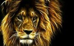 fractal lion, fractal animals x 1080 px] - Cartoons/Digital art - Pictures and wallpapers Lion Hd Wallpaper, Animal Wallpaper, Neon Wallpaper, Wallpaper Pictures, Wallpaper Downloads, Lion Pictures, Animal Pictures, Image Lion, Fire Lion