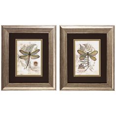 Dragonfly 2 Piece Framed Painting Print Set