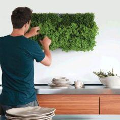 Ein absolut genialer Kräutergarten für die Wand.  #Küchenideen #Kräuter #Kräuterwand #Herbs #Gewürze #Einrichtungsideen