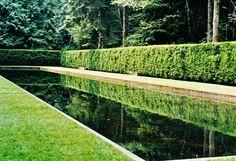 The Outlander Plant Guide Diana Gabaldon Outlander Series, Plant Guide, Plant Information, Back Gardens, Railroad Tracks, Pergola, Scotland, Plants, Image