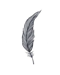 One Feather - Black & White Art Print