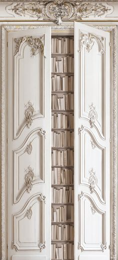 Great idea the double portes biblio Haussmannienne H.2,5 x L.1,36 m - Koziel