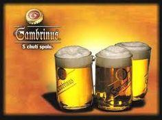 Best beer ever Most Popular Beers, Czech Beer, Water Quality, Best Beer, Prague, Brewing, Good Things, Tableware, Awards