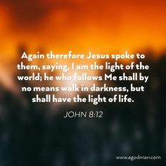 John 8:12 Again therefore Jesus spoke to them, saying, I am the light of the world; he who follows Me shall by no means walk in darkness, but shall have the light of life. Bible Verse quoted at www.agodman.com