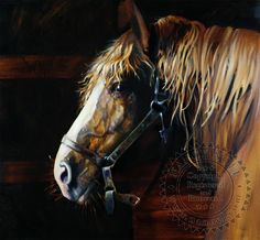 Belgian Mare by Nancy Noel  Her second fantastic horse profile.