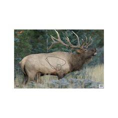 """Eze-Scorer Elk 23"""" x 35"""" - Per 100"""