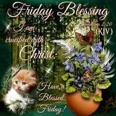 Good Morning Everyone, Happy Friday. I pray that you have a safe and blessed day!!