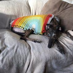 Rainbow Drop Blanket pattern by Melu Crochet Baby Afghan   Etsy Baby Afghan Crochet, Baby Afghans, Crochet Blanket Patterns, Crochet Stitches, Stitch Patterns, Modern Crochet Patterns, Bobble Stitch, Lap Blanket, Chunky Yarn