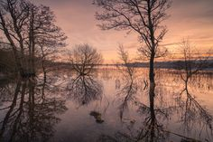 https://flic.kr/p/CMVH4w | Floods Floods Floods | Floods Floods Floods   Sunset over a flooded Castle Loch in Lochmaben with great reflections.  Castle Loch , Lochmaben, Dumfries and Galloway.  Please feel free to leave a comment or share with your friends and family should you wish.   Camera - Sony A7RII Lens - Sony FE16-35mm f4 Focal Length 17mm  Fstop - f8 Exposure Time - 0.6 second ISOspeed - ISO100   All rights reserved  © Brian Kerr Photography 2015