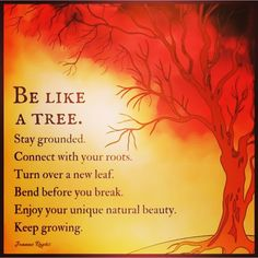 Ikea Tree, Kitchen Island Lighting Modern, Self Quotes, Back To Basics, School Counseling, New Leaf, Meaningful Quotes, Wisdom Quotes, Natural Beauty