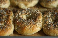 Bagels: 3 1/2 cups all purpose flour (OR high-gluten flour, such as King Arthur Flour's Sir Lancelot), plus more if necessary 4 1/2 tsp instant yeast 3 TB granulated sugar 1 TB kosher salt 1  1/2 cups water (OR warm whey from making yogurt) vegetable oil for greasing 2 TB dark brown sugar (OR barley malt syrup) coarse cornmeal, for sprinkling Optional toppings: parmesan cheese, asiago cheese, sesame seeds, cinnamon & sugar, poppy seeds, pizza sauce and cheese, jalapeno and cheddar cheese…
