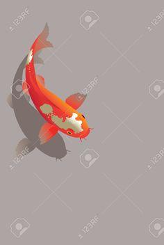Vector illustration of traditional sacred Japanese Koi carp fish Illustration , Koi Painting, Watercolor Paintings, Fish Sketch, Fish Illustration, Fish Wallpaper, Japan Art, Fish Art, Easy Paintings, Mail Art