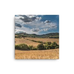 Blue hill nature canvas