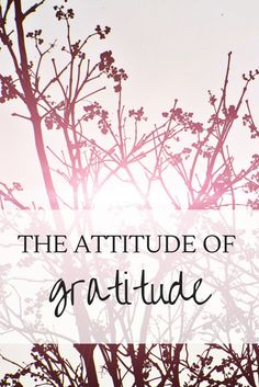 Gratitude is being thankful and showing appreciation for what we have in life. Gratitude is the art of giving thanks for everything, all the the time. It is appreciating the air we breathe, the food on the table, and the very fact that we woke up that mor
