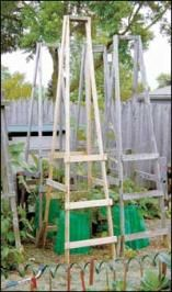 DIY Folding Tomato Cages