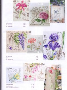 Gallery.ru / Фото #7 - DFEA HS 28 Etudes de Botanique. - Olechka54
