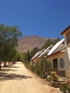 Valle del Elqui, IV Región. Chile.