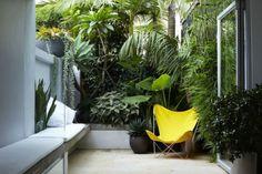 Bilder Windschutz Mauer begrünnen gelber Gartenstuhl