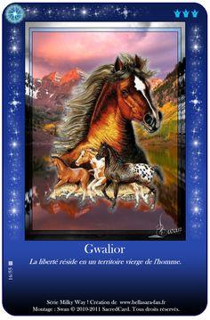 Bella Sara Fan : Cartes Bella sara - Milky Way Pegasus, Bella Sara, Kids Animals, Dragon Pictures, Wiccan Spells, Milky Way, Mermaids, Dragons, Spirit