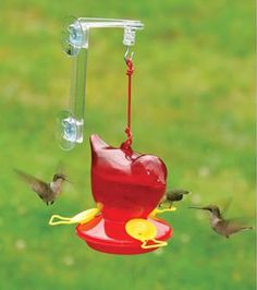 Red Bird Hummingbird Feeder, at Duncraft