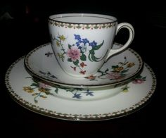 c1891 Aynsley Trio 5950 Mosquito Flowers Bird (Crane ? ) Cup Saucer Plate | eBay