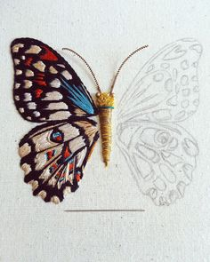 Getting to Know Brazilian Embroidery - Embroidery Patterns Butterfly Embroidery, Hand Embroidery Stitches, Crewel Embroidery, Embroidery Techniques, Ribbon Embroidery, Machine Embroidery, Embroidery Designs, Embroidery Supplies, Embroidery Needles