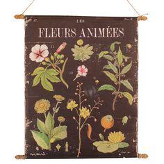 Fleurs Botanical Chart