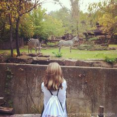Fort Worth Zoo ~ Ft. Worth, TX - R We There Yet Mom? | Family Travel for Texas and beyond...