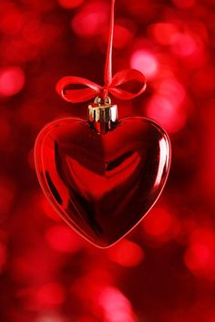 Red - the colour of love and Christmas. Enjoy this holiday season!