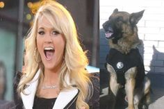 Carrie Underwood Heard a Police Officer's Dog Was in Danger… Then She SAVED THE DAY!  Read more: http://www.thepoliticalinsider.com/carrie-underwood-heard-a-police-officers-dog-was-in-danger/#ixzz3XyrfuxJb - The Political Insider