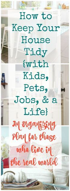 How to keep your house tidy with kids pets jobs and a life - an organizing plan for those who live in the real world
