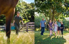 Waikato vet Danielle Hawkins draws on country life for popular romance novels