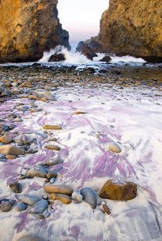 Of The Most Unusual Beaches Around The World Pfeiffer Beach Purple Sands - Big SurPfeiffer Beach Purple Sands - Big Sur Big Sur California, California Dreamin', California Camping, Central California, Oh The Places You'll Go, Places To Travel, Places To Visit, Beverly Hills, West Coast Road Trip