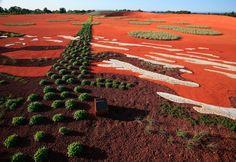 Taylor Cullity Lethlean · Australian Garden · Divisare