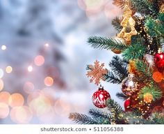 Christmas Tree Stock Photos, Images & Photography | Shutterstock