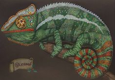 No 34 Maurizio Mortarino Chameleon Won 2nd Prize Autographed Intricate Ink Animals In Detail Book