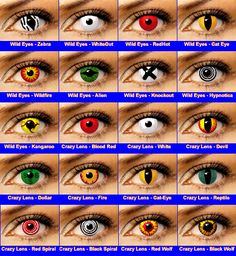 bacce4074c4 31 Best Fx Contacts images