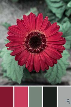 ZJ Colour Palette 632 #colourpalette #colourinspiration