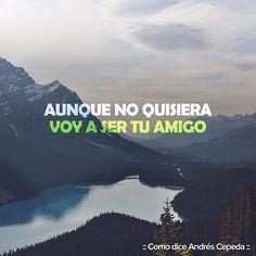 Este mensaje fue compartido vía Andrés Cepeda Decir No, Sad, Humor, Diana, Quotes, Instagram, Saints, Frases, Messages
