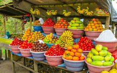 All fruits ripe.St Elisabeth the bread basket parish of Jamaica produce food needs fruits, vegetables poultry beef and tubers.Big up St. Colorful Fruit, Exotic Fruit, Fresh Fruits And Vegetables, Fruit And Veg, Tapas, Carribean Food, Caribbean, Fruit Stands, Healthy Fruits