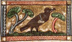 A Jay or jackdaw. KB KA, 16, Folio 90r
