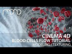 Cinema 4D - Blood cells flow tutorial part 1 - YouTube