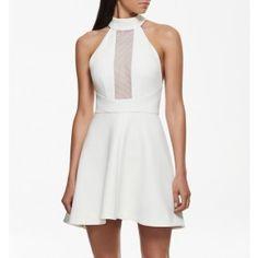 Kendall mesh insert skater dress Porcelain - Womens Fashion | Forever New