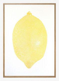 Yellow Lemon by Monika Petersen   Poster from theposterclub.com
