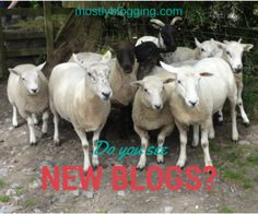 Blog Party - #Networking #blogging opportunities. Click to meet other bloggers. Mostlyblogging.com