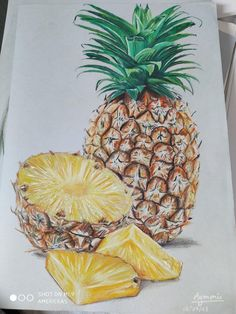 A pineapple drawing with colored pencils : drawing drawing plants Pineapple Sketch, Pineapple Drawing, Pineapple Art, Pineapple Painting, Colored Pencil Artwork, Color Pencil Art, Colored Pencils, Fruits Drawing, Plant Drawing
