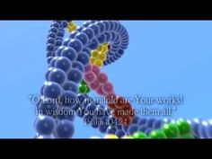 DNA is a very powerful, massive information storage system, which codes for the production of proteins.  It is the operators manual for the body, written in chemical language of the body.  Language is a code and only comes from intelligence.  Information only comes from information. Nobody has ever seen matter spontaneously give rise to a code.