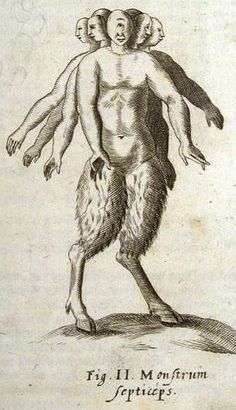 """Schott, 579. """"Seven-headed monster."""" from Jesuit Father Gaspar Schott's Physica Curiosa (1662), a compendium of abnormal births, strange animals and fabulous humanoid creatures thought to inhabit the far reaches of the world."""