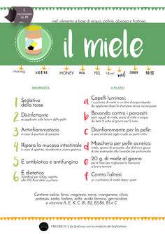 Ready for printing infographic about honey..in italian