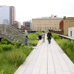 The High Line- NYC
